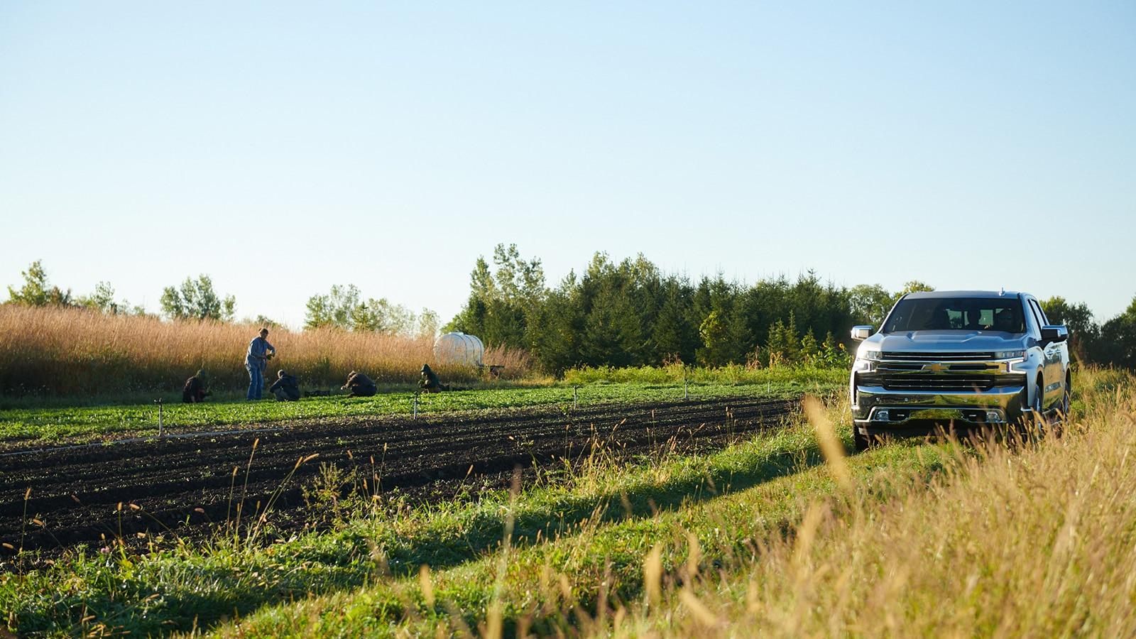 Una Chevy Silverado 2019 conduce pasando un pequeño campo de cosechas sobre un camino de tierra de dos carriles.