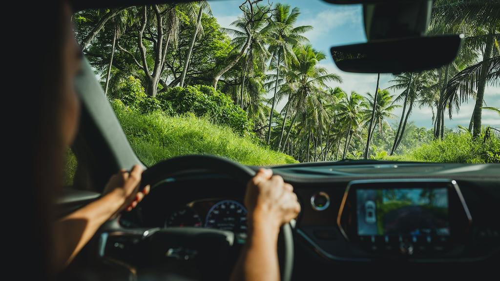 Una toma de un cielo azul, palmeras y un paisaje verde, vista a través del parabrisas de una Chevrolet Blazer.