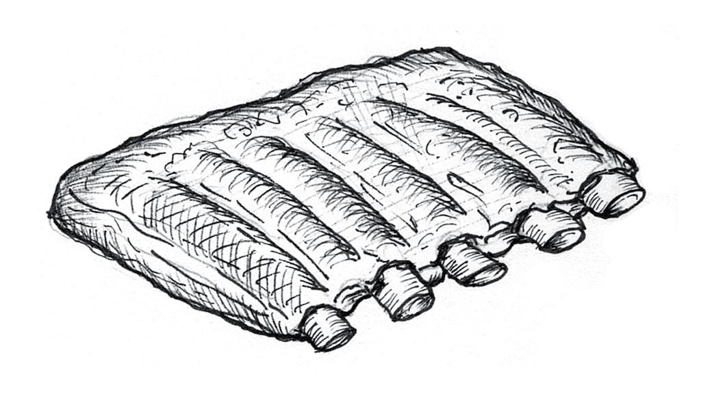 Dibujo de costillas.
