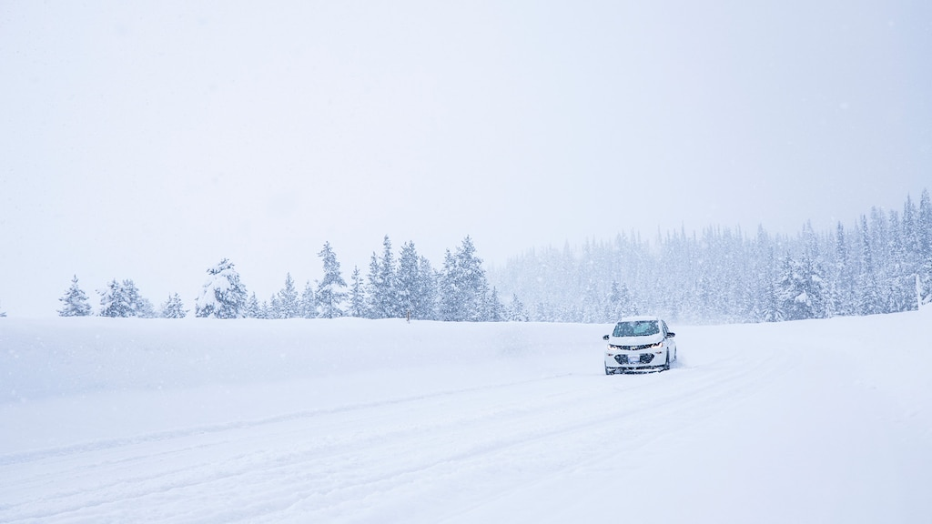 A white Bolt EV alone on a snow-covered road with a snowy forest in the background.