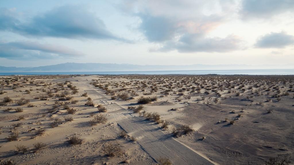 La arena invade un camino que conduce a una estación aérea naval auxiliar abandonada en el lago Saltón de California.