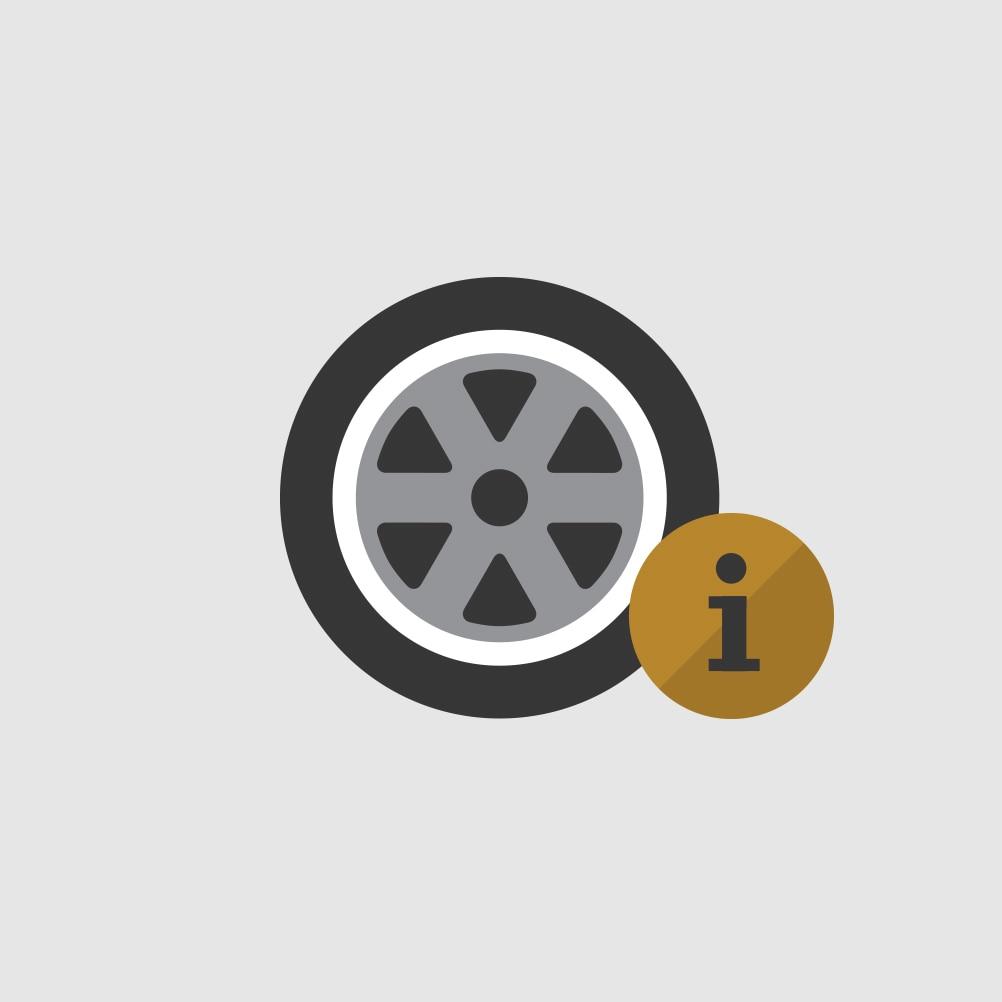 Ícono deConceptos básicos sobre neumáticos