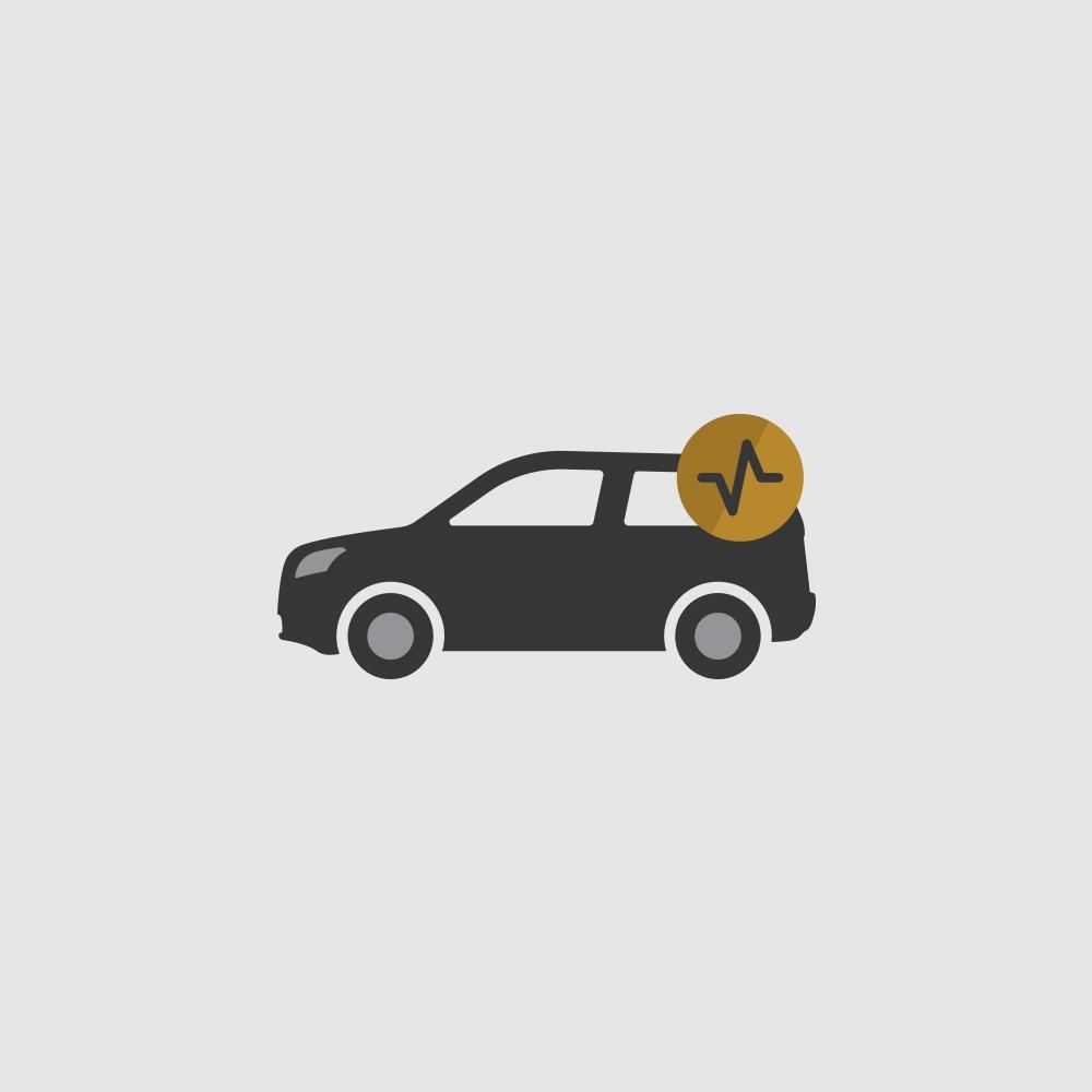 Ícono de estado de los vehículos
